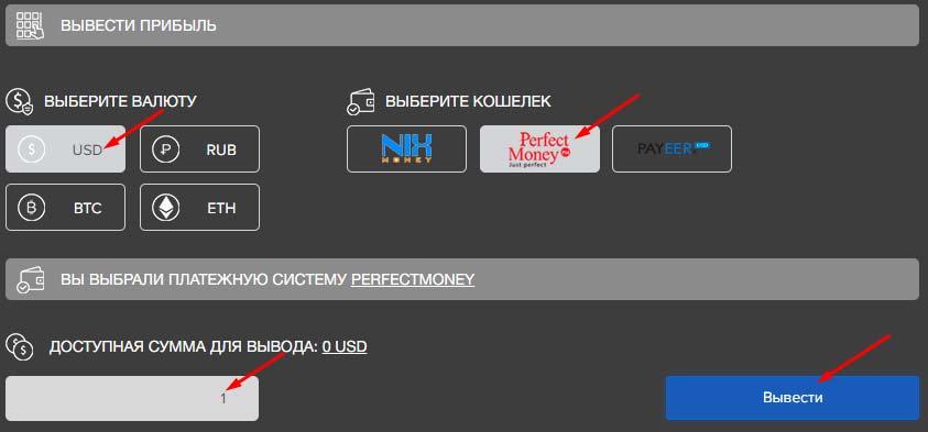 Вывод средств в BitWat 2