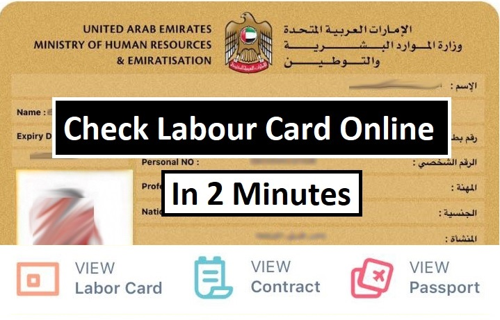 Check Uae Labour Card Online Cardcontract Uae Labours