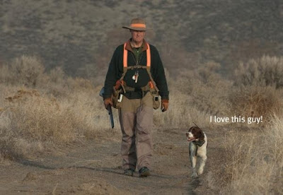 #birddogsandbirdhunting, bird dogs and bird hunting