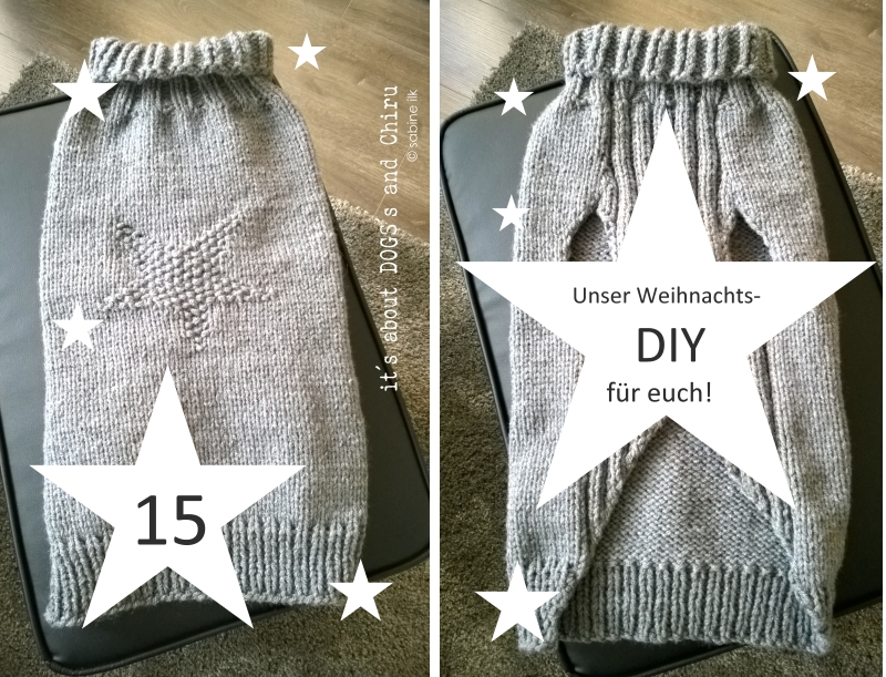 DIY für Hunde | Hundepullover selber stricken - ABOUT DOGS AND CHIRU ...
