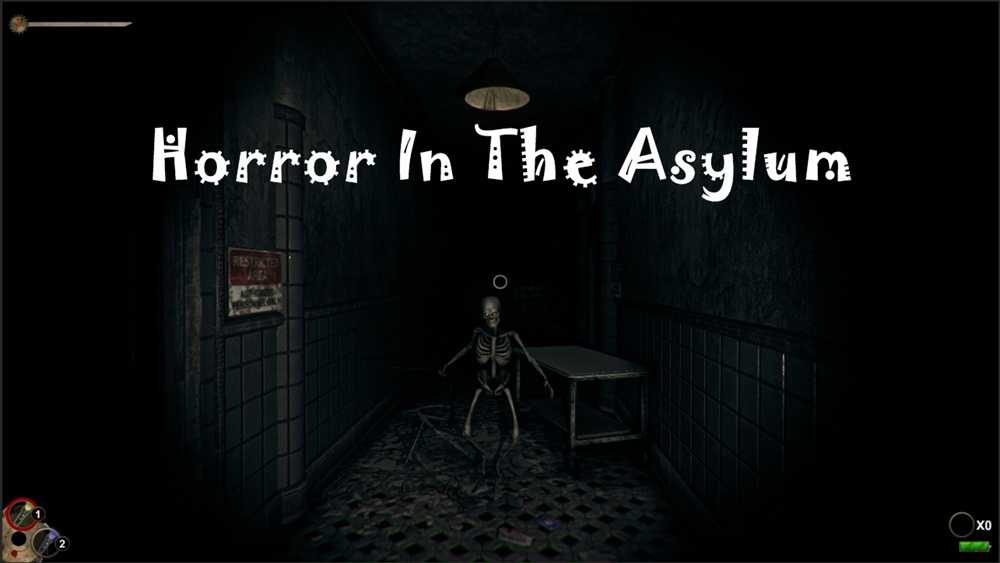 Horror In The Asylum Download Poster