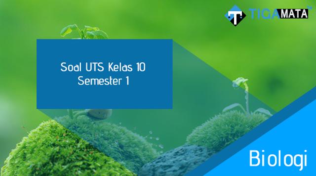 85 Soal dan Jawaban Soal UTS Biologi Kelas 10 Semester 1