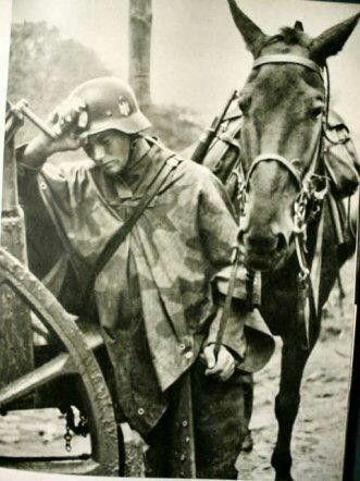 Horses in World War II worldwartwo.filminspector.com German troops