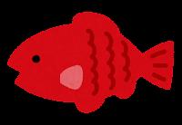 小魚のイラスト(赤)