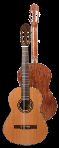 Ver Guitarra Clásica - Modelo B20 de Francisco Bros