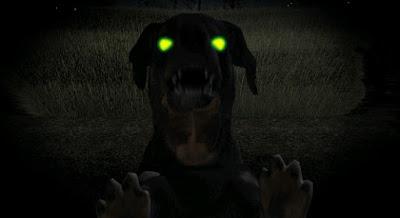 Jilatan Anjing Peliharaan Misterius di Malam Hari