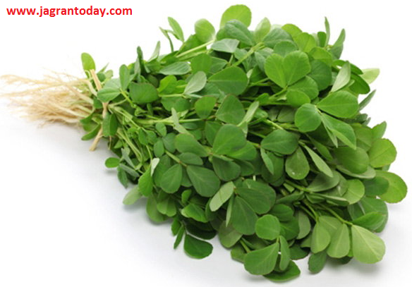 Use Fenugreek for Successful Treatment of Stones