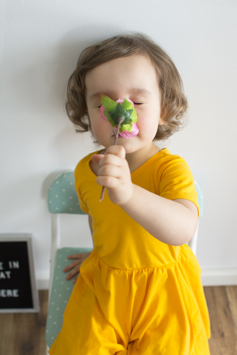 Toddler beauty and the beast dress