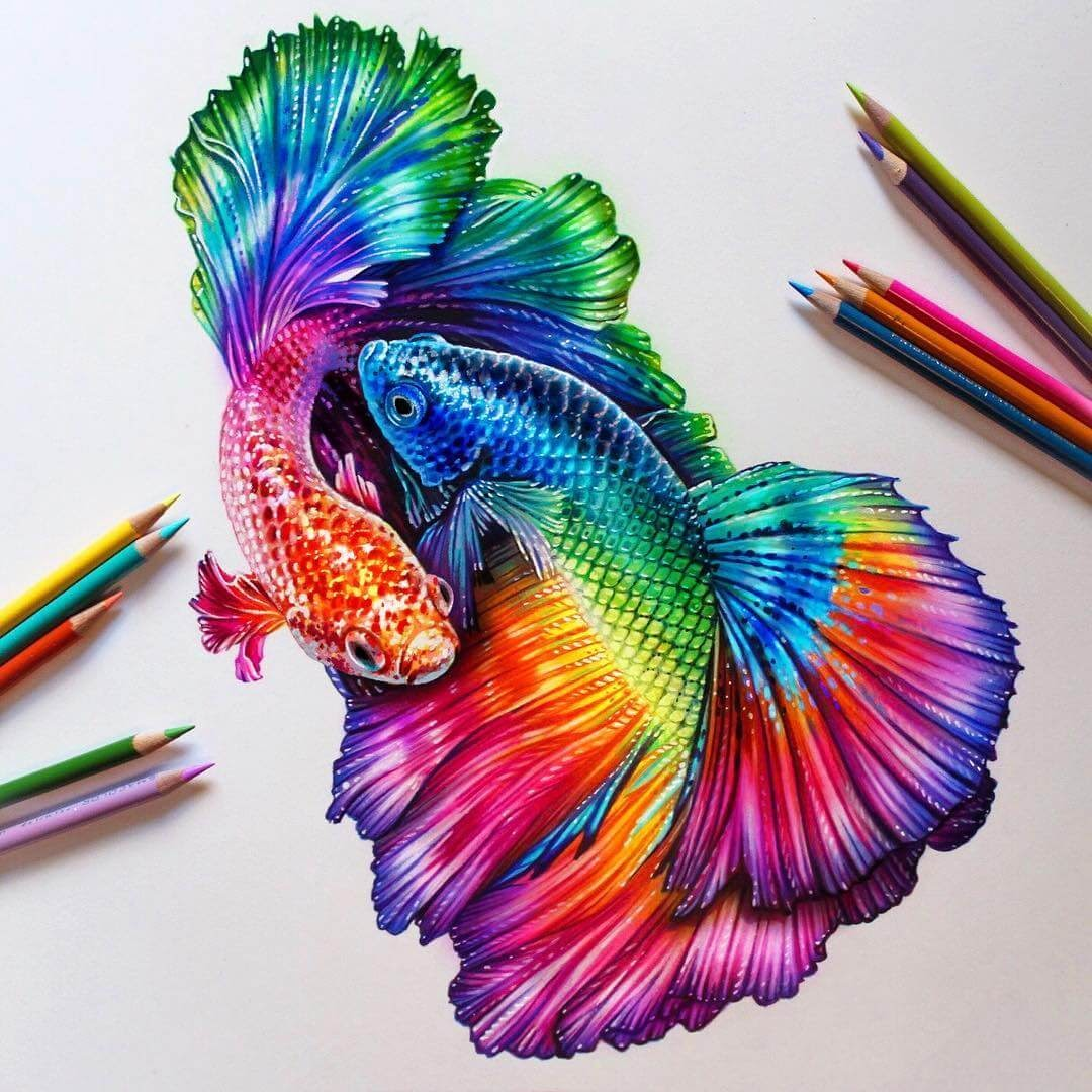 06-Rainbow-Beta-Fish-Glowing-Colorful-Drawings-Morgan-Davidson-www-designstack-co