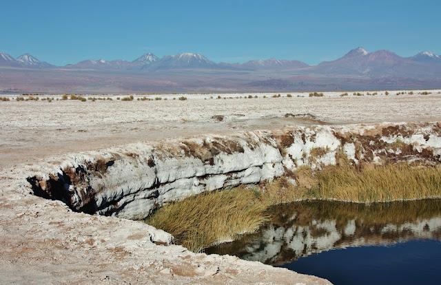 Ojos del Salar, no Deserto do Atacama.