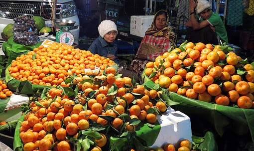 Vegetarian eat oranges from Shan State