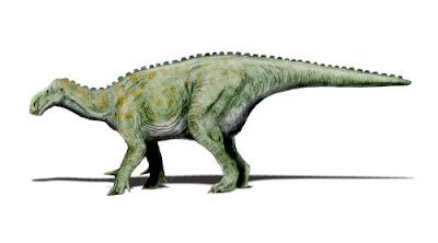 Iguanodon | facts | size