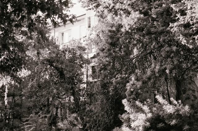 Ouzbékistan, Tachkent, cité-jardin, © L. Gigout, 1999