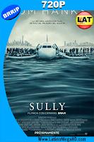 Sully: La Hazaña De Husdon (2016) Latino HD 720p - 2016