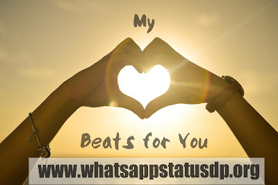 top-love-status-in-hindi-for-whatsapp