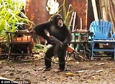 ape-shooting-a-gun.jpg