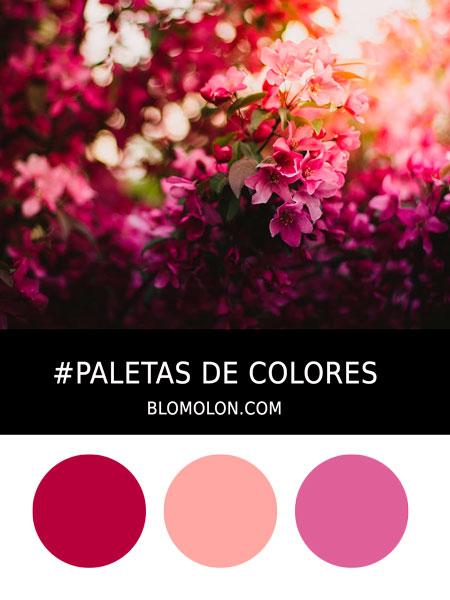paletas_de_colores_mes_de_abril_1