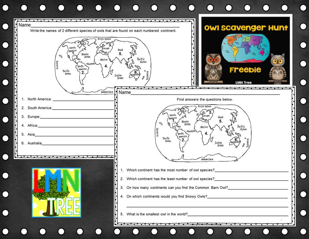 Lmn Tree Amazing Owls Free Resources And Activities