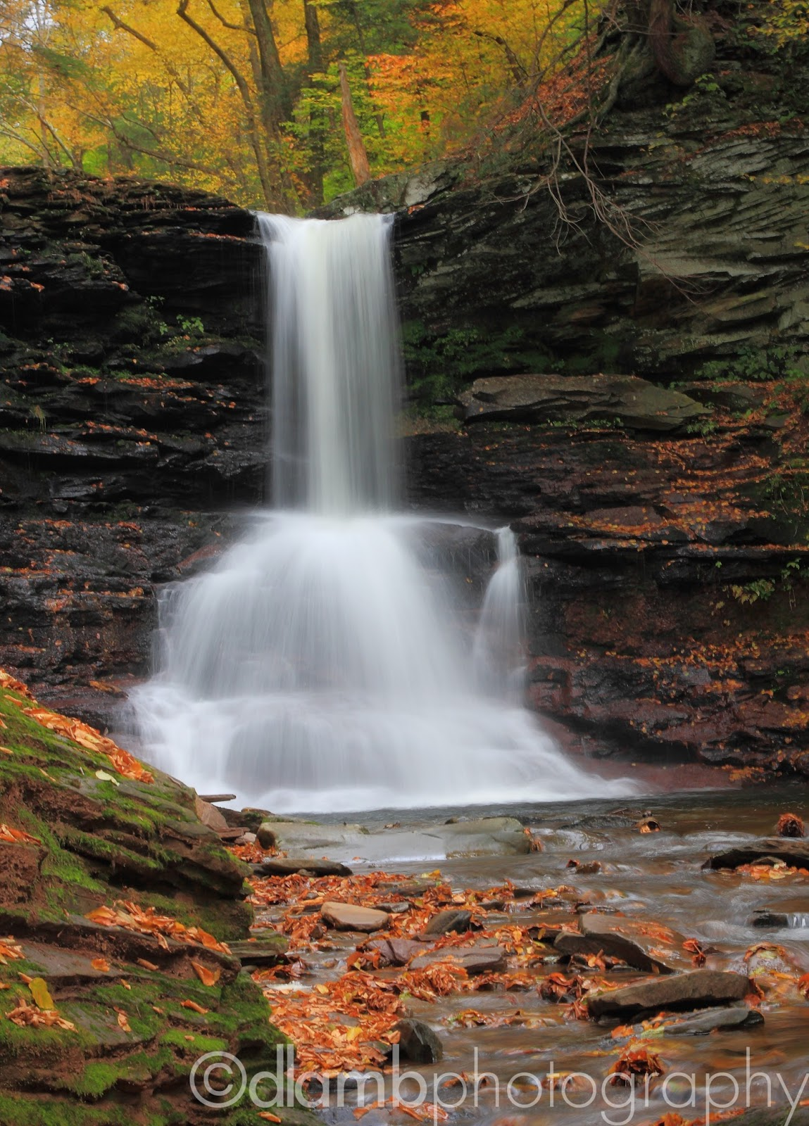 http://david-lamb.artistwebsites.com/featured/autumn-falls-david-lamb.html