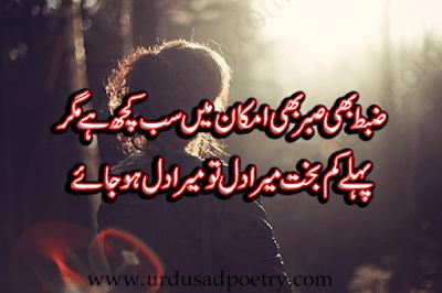 Zabt Bhi Sabar Bhi Imkaan Main Sub Kuch