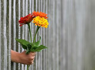 Cara Mudah Menghilangkan Perasaan Sakit Hati Sehabis Di Selingkuhi