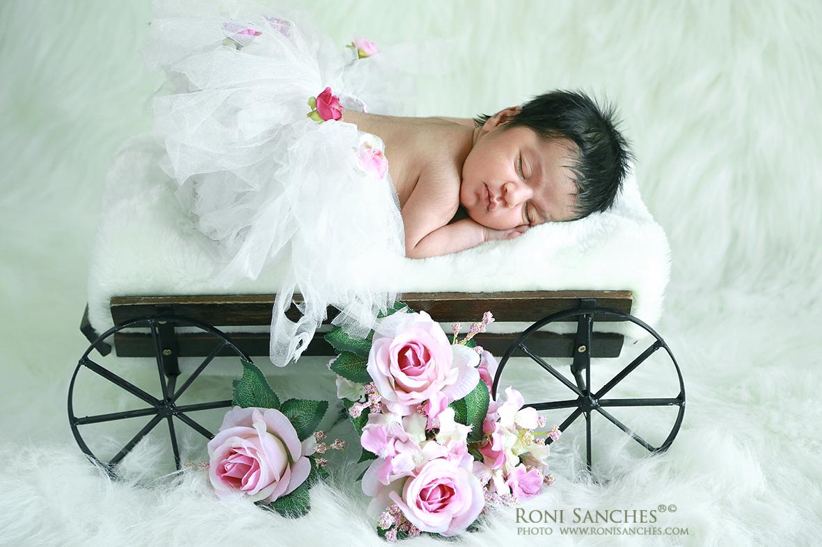 uma sessão de newborn com recém-nascido