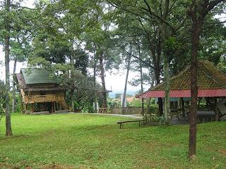Area Campas Camp
