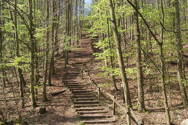Die Himmelsleiter, eine steile Treppe, an der Glessener Höhe