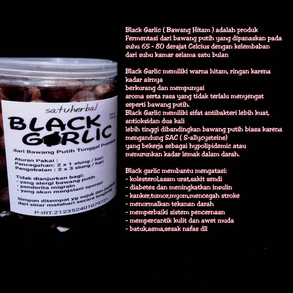 Herbal Mabruuk Surabaya 2017 Black Garlic Bawang Tunggal 500 Gr Tersedia Ukuran 75gr250gr500 Dan 1 Kg
