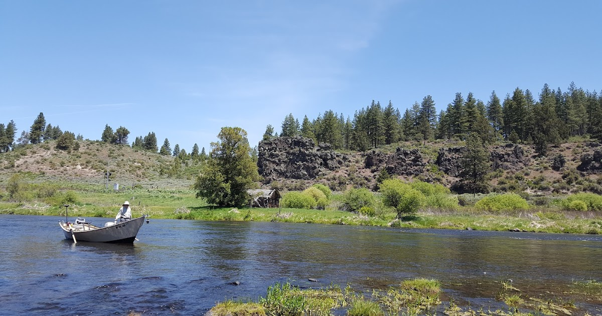 Rogue river and southern oregon fly fishing guide not a for Rogue river oregon fishing