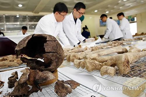 Huesos de soldados chinos en Corea