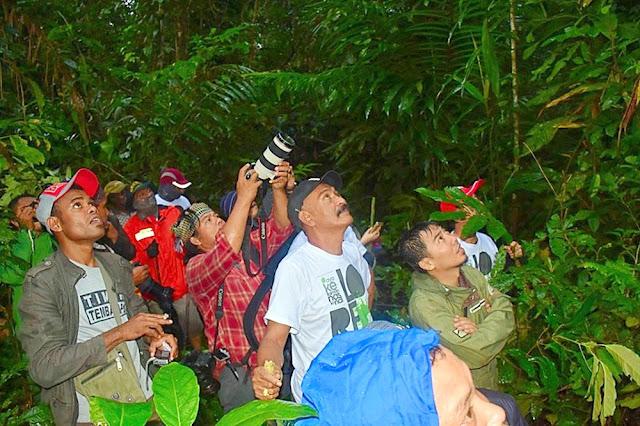 Hutan Uvutawi Surganya Burung Cenderawasih; Journalist Field Visit To lorenstz National Park (1)