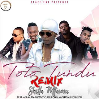 Shilla Mtamu Ft. Aslay, Maromboso, DJ Ironik & Quata BuduKusu - Toto Tundu Remix
