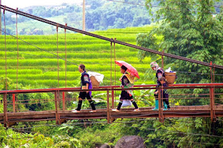 What makes you spend 5 days for a trip to explore Sapa & Mu Cang Chai? 4