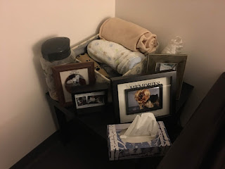table with photos of pets