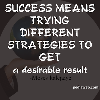 SUCCESS MEANS TRYING DIFFERENT STRATEGIES TO GET A DESIRABLE RESULT