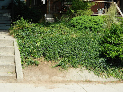 Palmerston Front Garden Cleanup after by Paul Jung Gardening Services Toronto