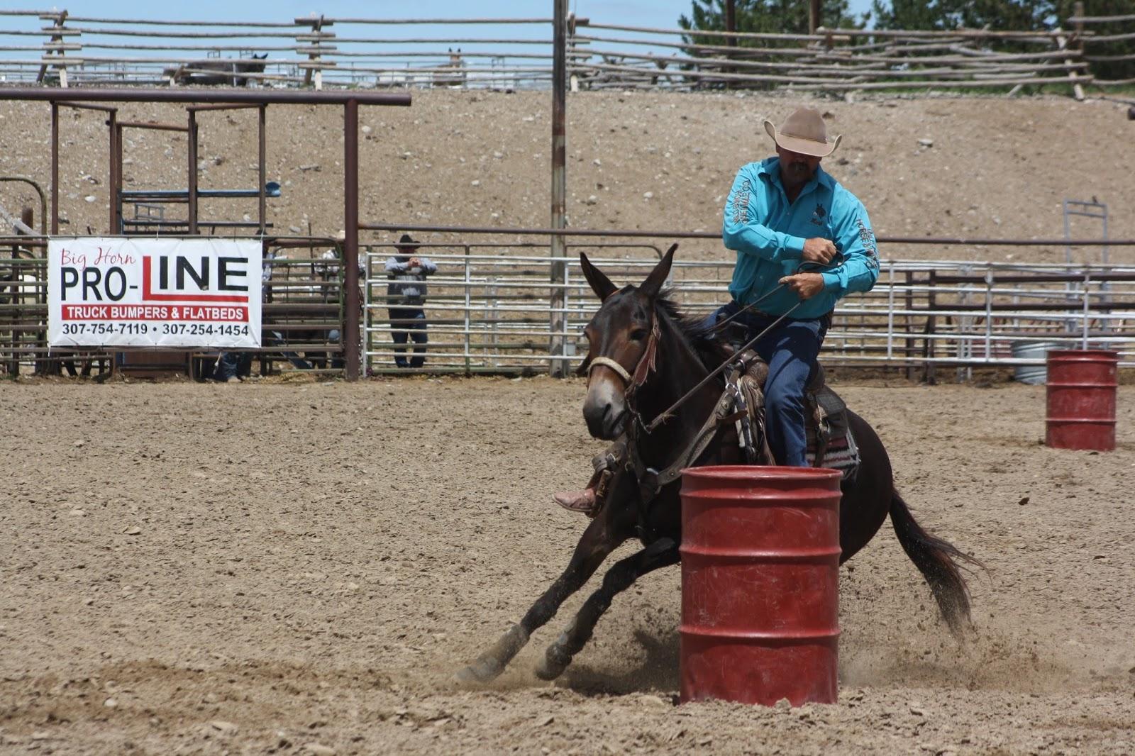 Mules And More Magazine Jake Clark Mule Days 2017