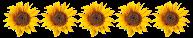 http://blog4aleshanee.blogspot.de/search/label/5%20Sonnen