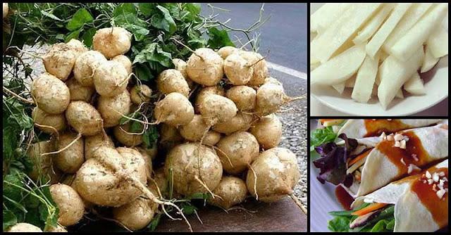 Health Benefits Of Singkamas (Turnip)