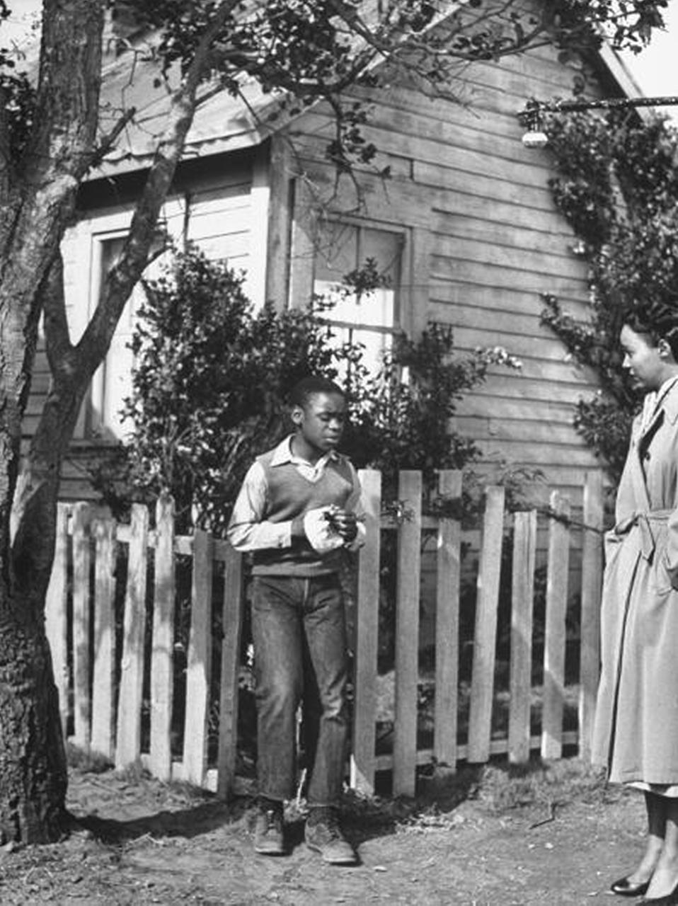 Harry belafonte 1953 movie