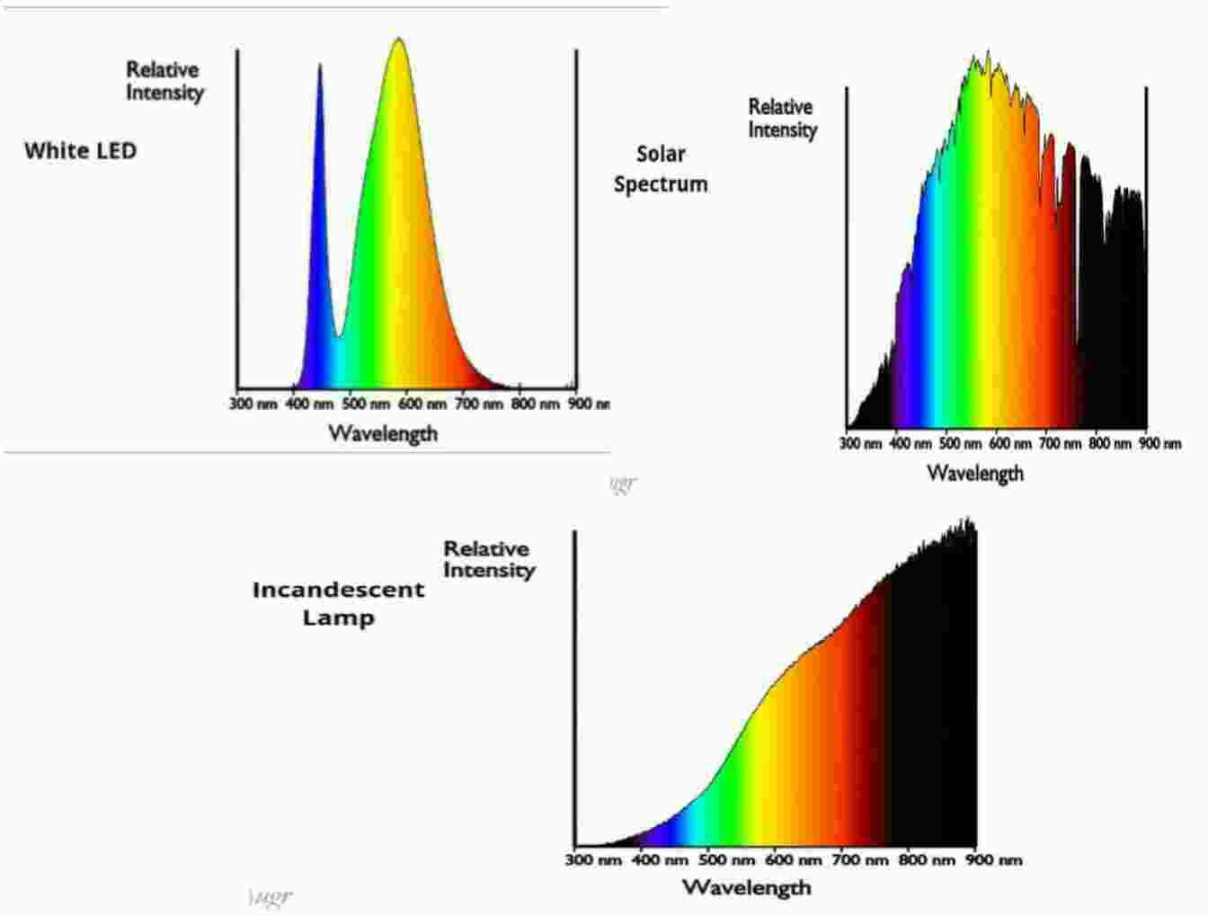 Light Emitting Diode Spectrum