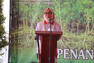 Wakil Walikota Cirebon, Mangrove Akan Menjadi  Bermanfaat Kalau Di Kelola Dengan Baik