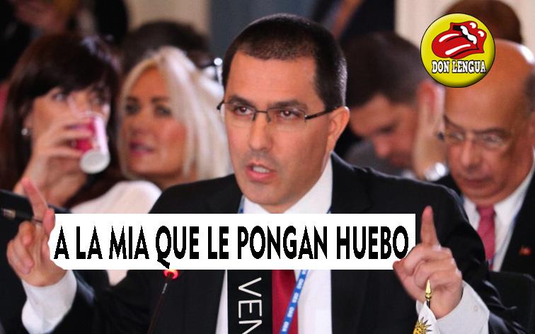 Jorge Arreaza aterrorizado por posible intervención militar de la ONU en Venezuela