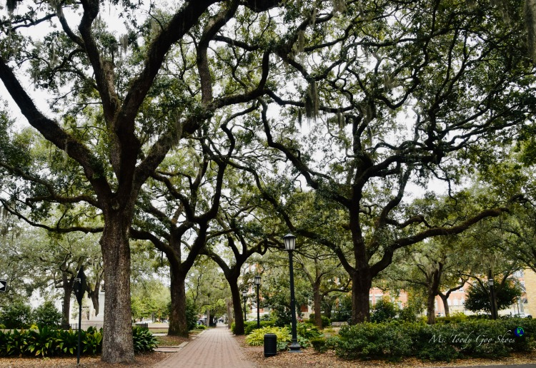 The Squares of Savannah:  #3 of 12 Things To Do in 24 Hours in Savannah, GA:  | Ms. Toody Goo Shoes