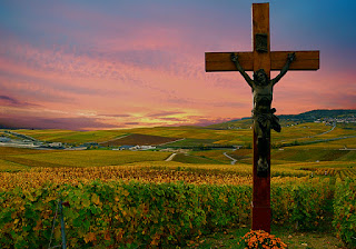 God gives us vineyards