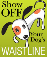 Show Off Your Dog's Waistline