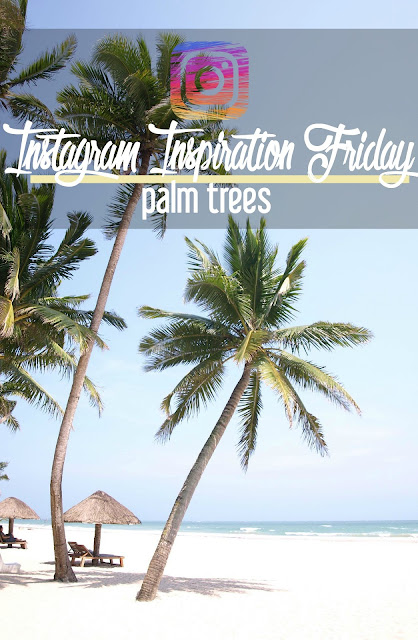 Instagram Inspiration Friday: Palm Trees | CosmosMariners.com