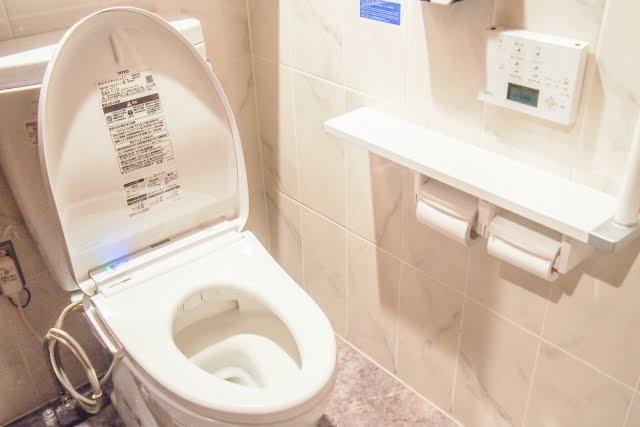 『トイレに流せるトイレブラシ』ってご存知ですか。