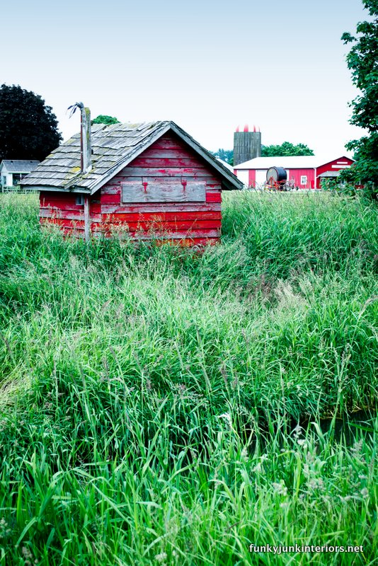 rustic red shed in field